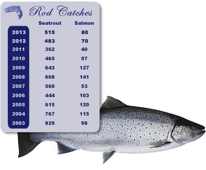 rod-catches-13