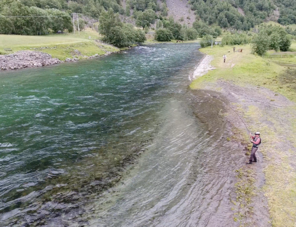 Salmon catch filmed from above