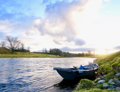River Tweed opening week 2017