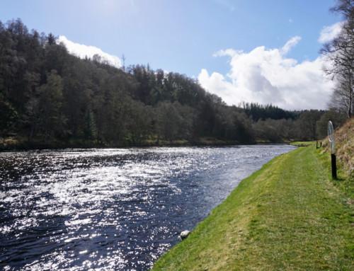 Följ med till River Spey i April