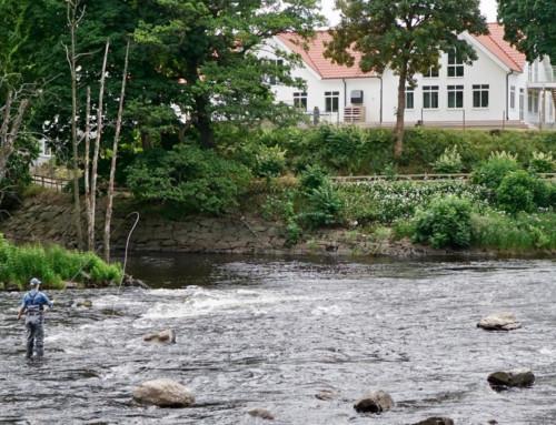 Days in Falkenberg