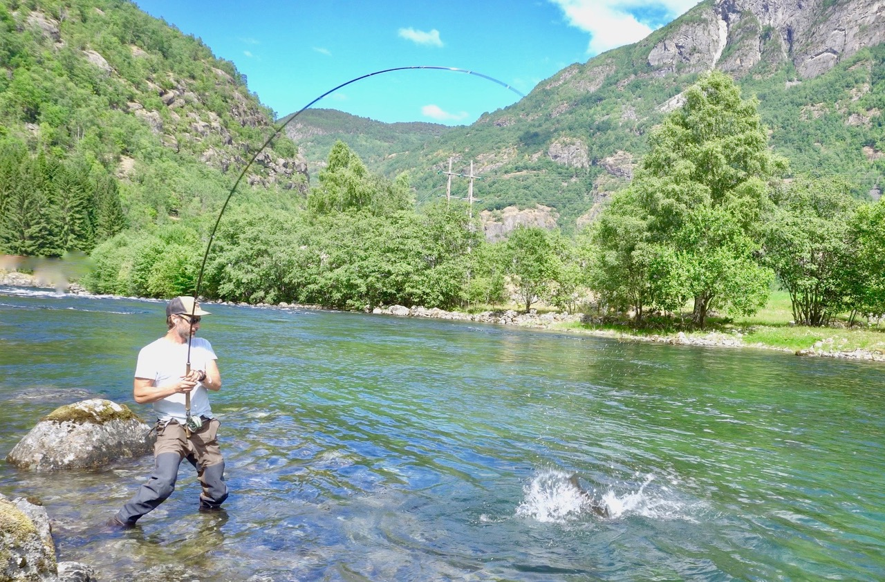 Mattias fiskeår 2018