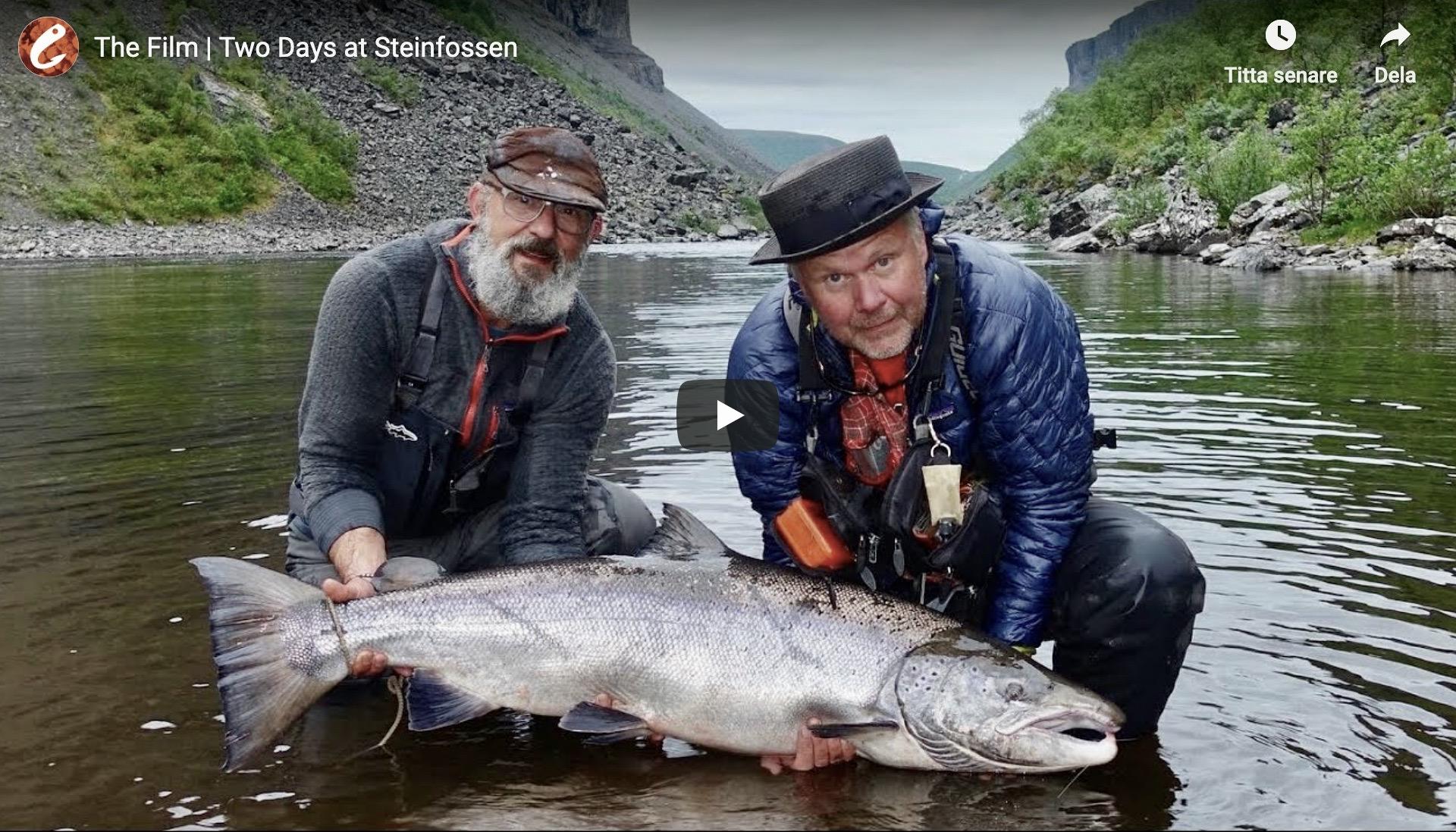 Håkan Norling 55lb atlantic salmon Steinfossen – Alta